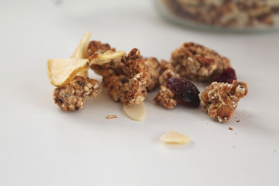 apple-cranberry-winter-granola