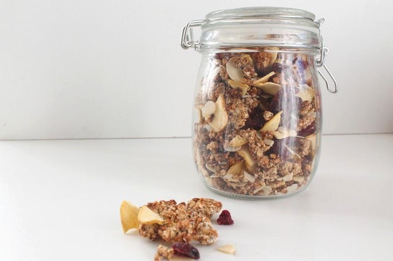 granola-pomme-cranberry