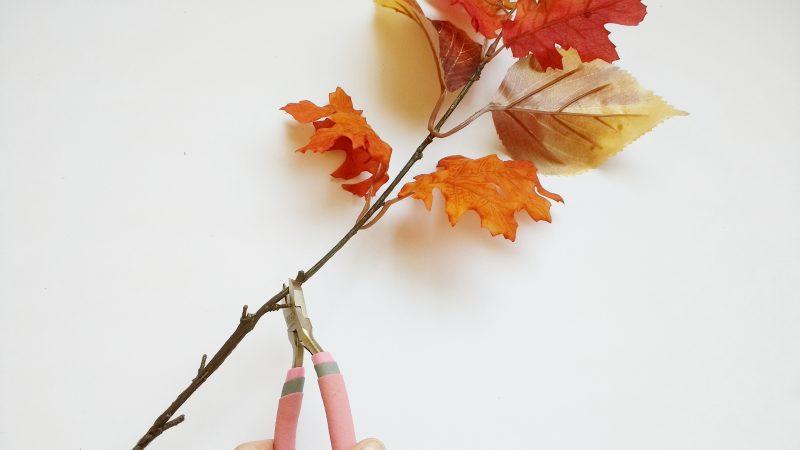 Cutting Leaf Stem