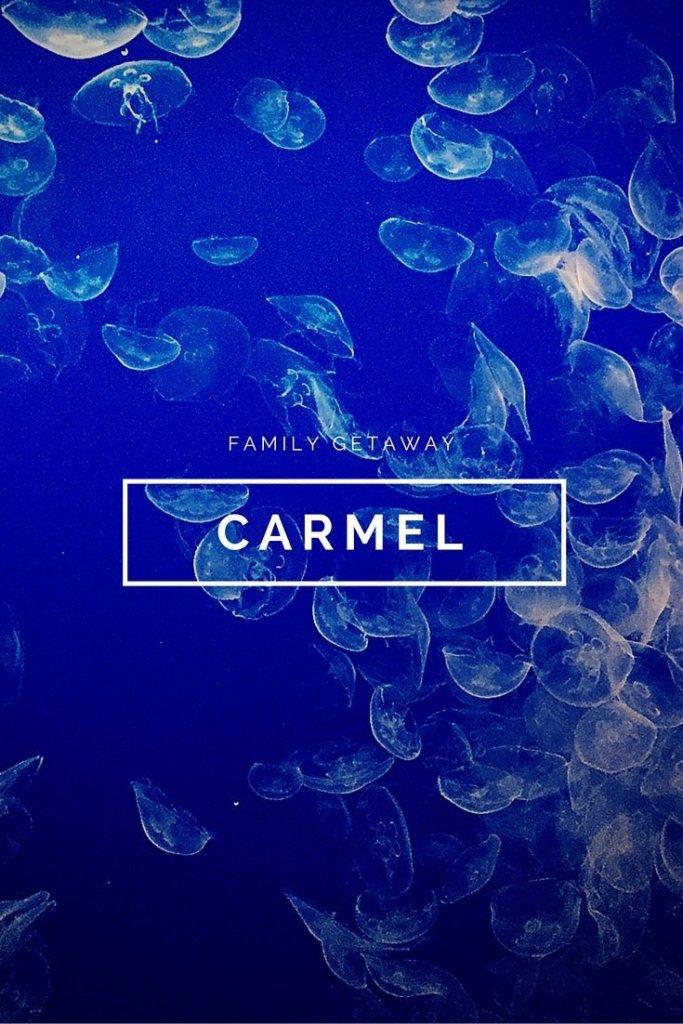 Carmel-by-the-sea pin image