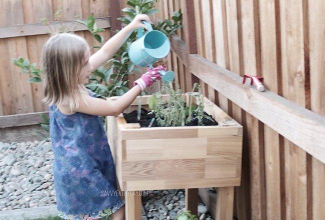 S watering plants