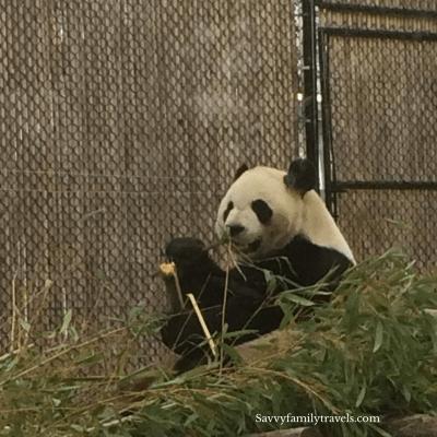 Toronto Zoo, Ontario Canada