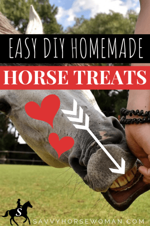 Homemade Horse Treats {Printable Recipe} - Easy DIY Horse Treats by Savvy Horsewoman