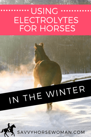 Using Electrolytes for Horses in the Winter