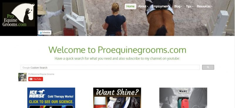 Pro Equine Grooms - Top Equestrian and Horse Blogs to Follow - 2019
