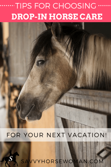 Tips for choosing drop-in horse or farm care for your next vacation with Savvy Horsewoman