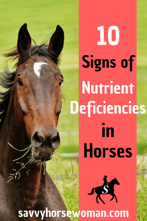 10 Signs of Nutrient Deficiencies in Horses, Horse Care and Feeding with Savvy Horsewoman