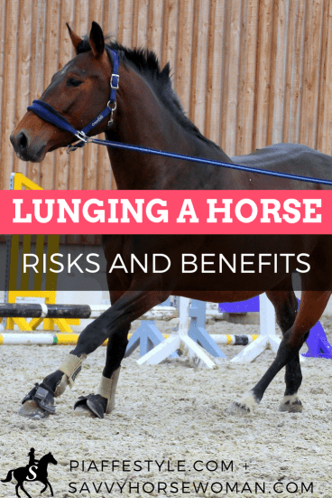 Lunging a Horse - Risks and Benefits