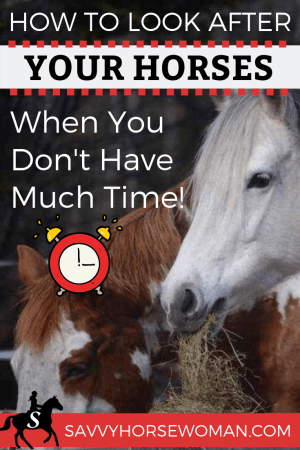 Barn chores checklist for keeping a horse on your property. Includes paddock footing, horse farm layout and homemade hay feeder!