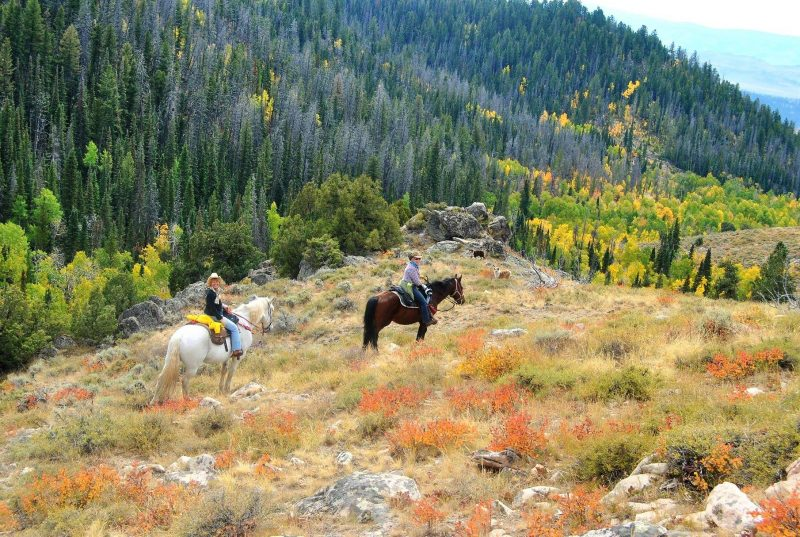 Best American Riding Ranches for your Next Vacation