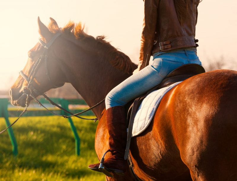 Psychological benefits of horse riding.