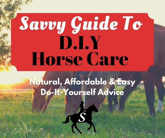 Savvy Guide to DIY Horse Care eBook - Tips and Recipes for Natural, Homemade Horse Products by Savvy Horsewoman