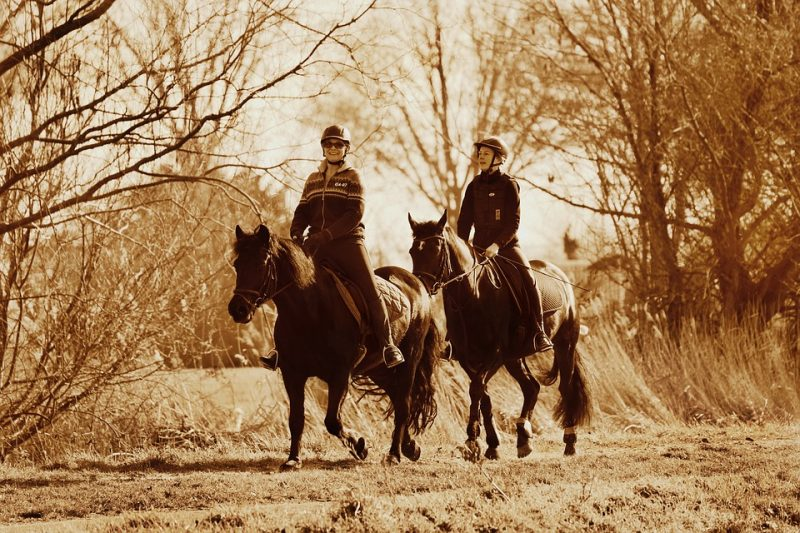 10 Tips for Returning to Horseback Riding