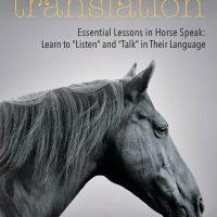 Horses in Translation: Essential Lessons in Horse Speak