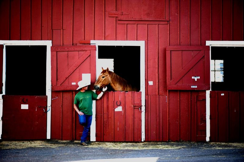 12 Tips for Building Your Perfect Horse Barn