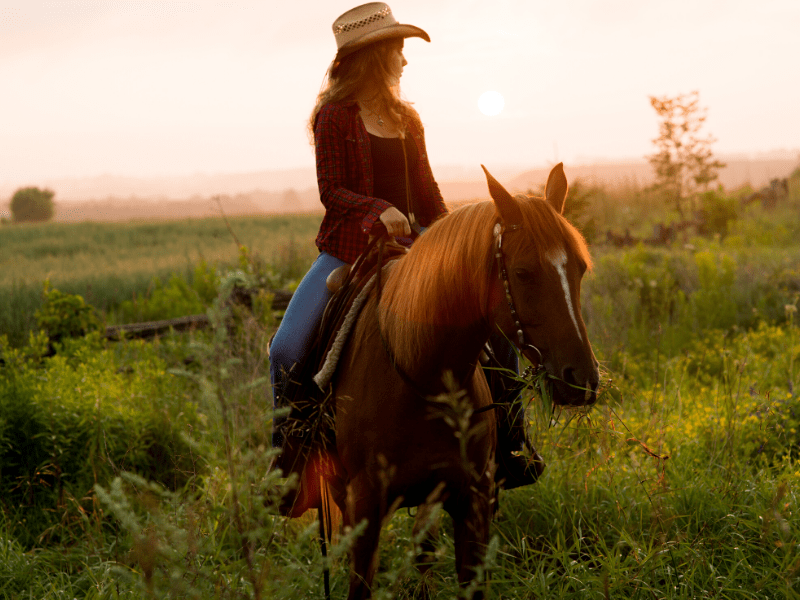 10 Trail Riding Tips on Horseback Savvy Horsewoman