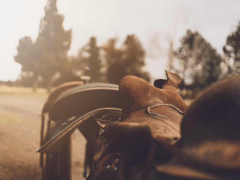 Check your tack before hitting the trail