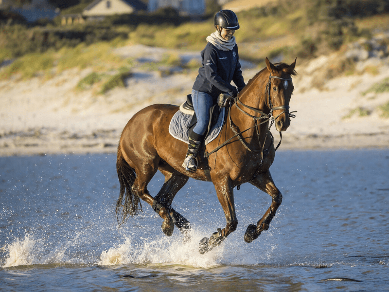 8 Ways to Gain More Confidence as a Horse Rider