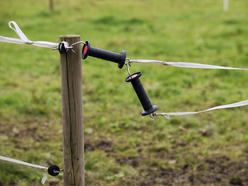 7 Reasons Your Electric Fence is Not Working (And How to Fix It)