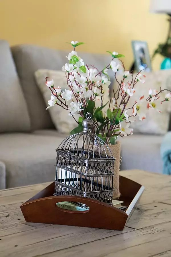 coffee table tray vignette with birdcage