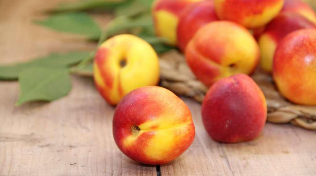 frutas-de-temporada