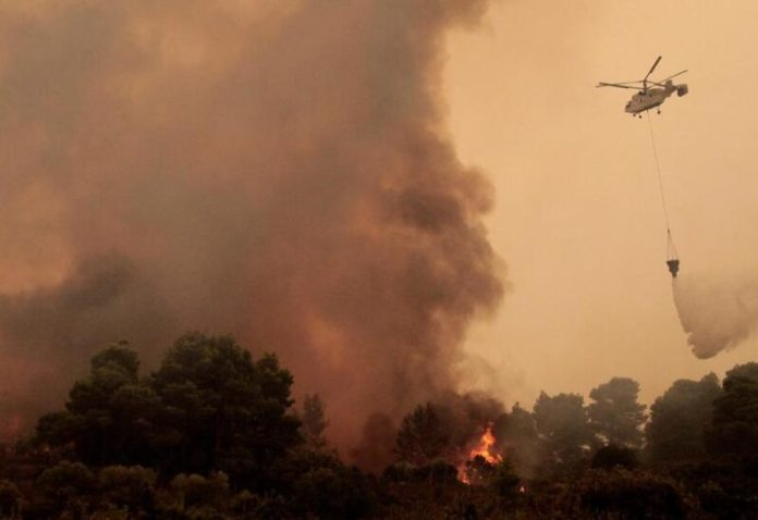 Forest fire in Serbia