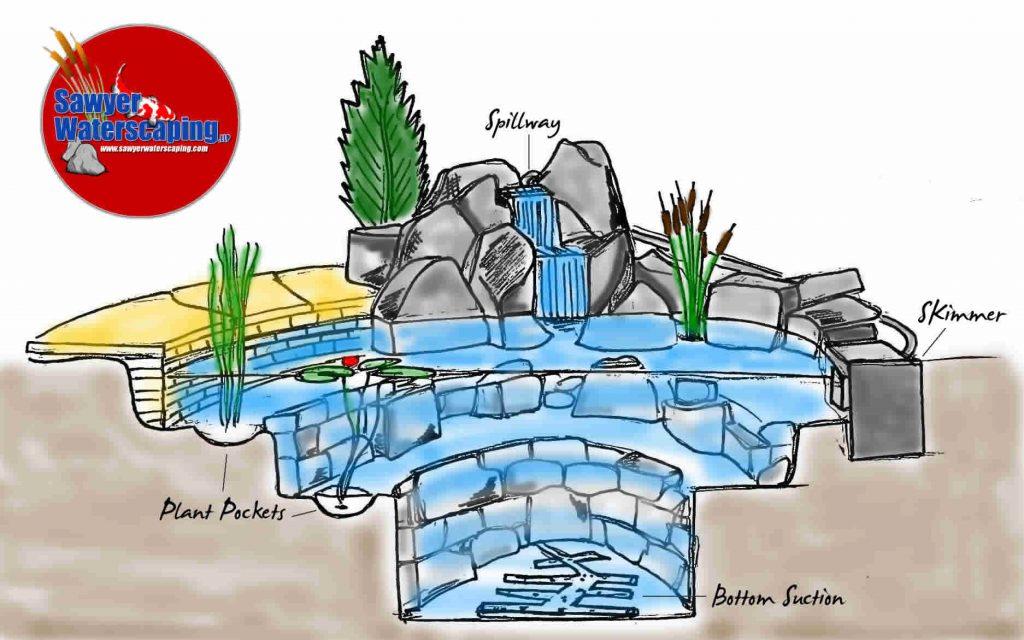 Pond_Diagram