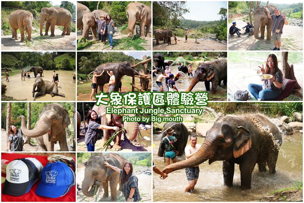 大象保護區體驗營