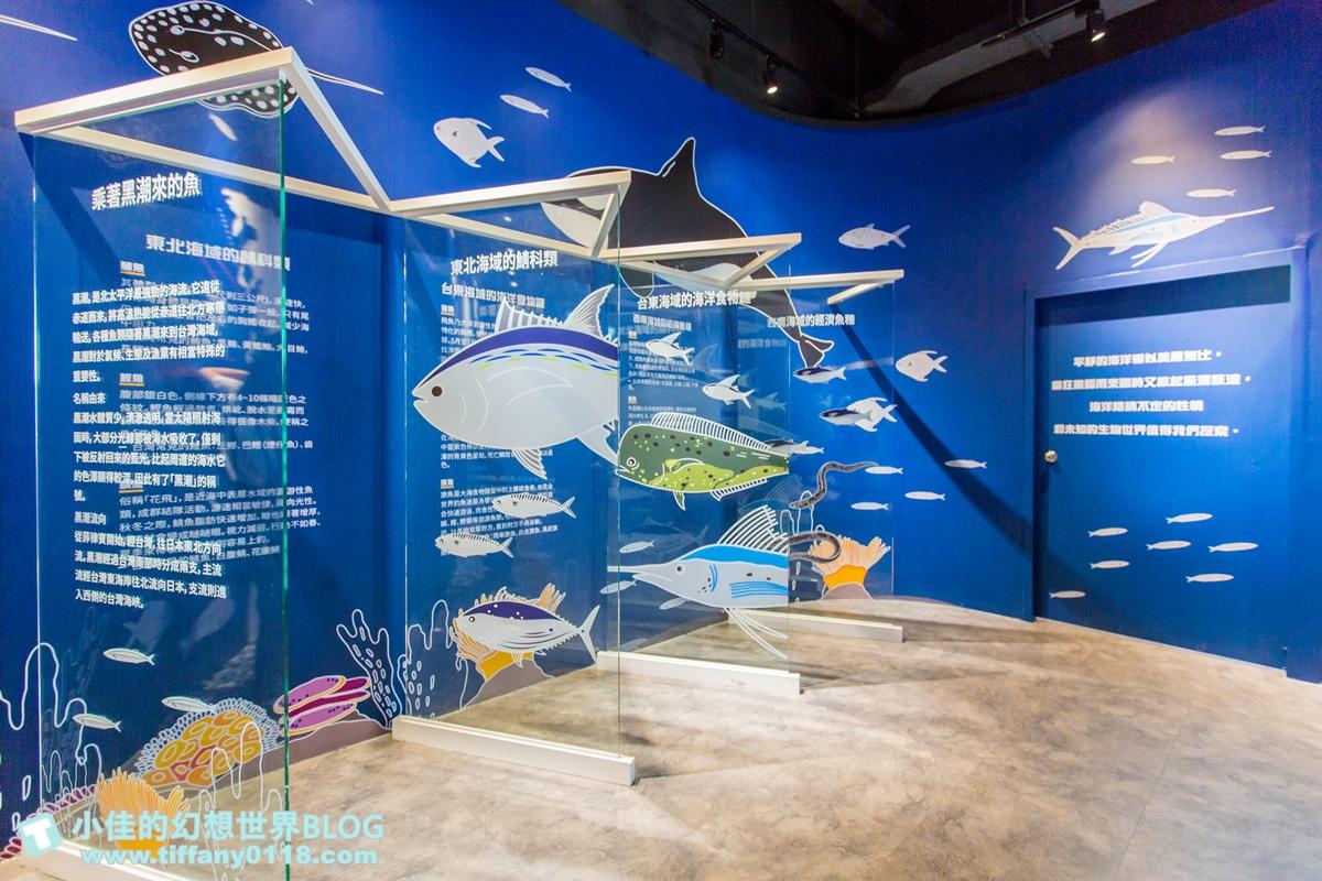 [台中景點]寶熊漁樂碼頭/全球唯一巨無霸釣魚機/3D劇場、DIY、虛擬釣場/台中室內景點推薦