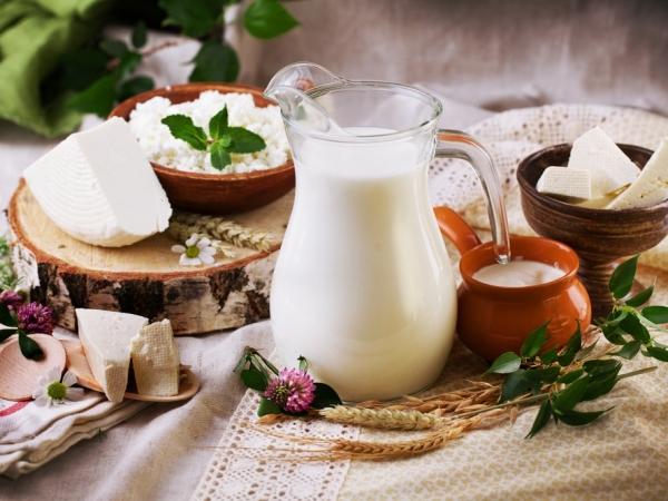 أطعمة حارقة للدهون في الرجيم اليومي