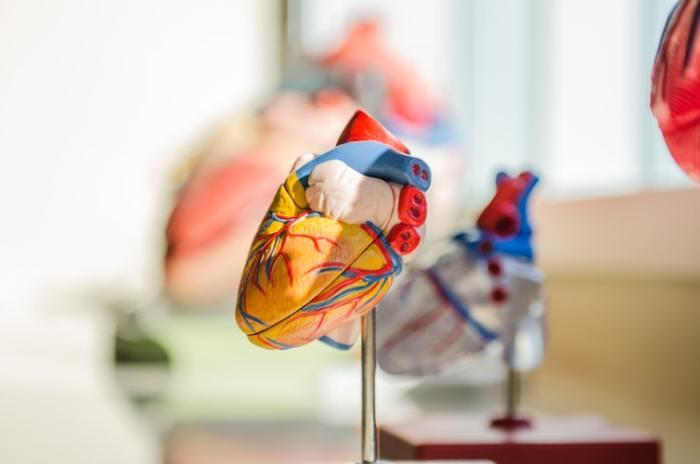 زبدة الفستق قادرة على تحسين صحة القلب