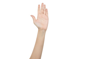 Hand raising for vote isolated on white background with clipping path