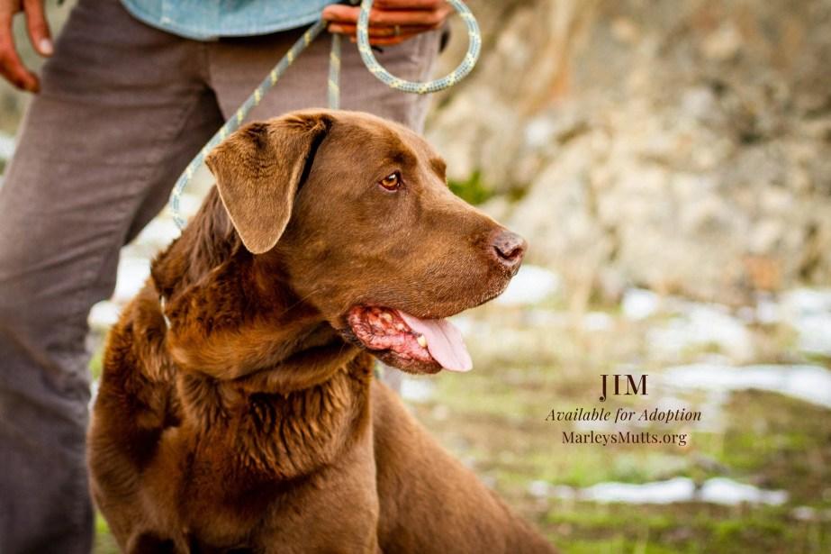 IMG_4756-Jim-Right-Profile-2048x1366
