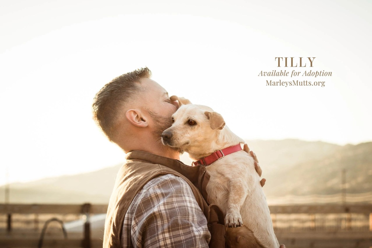 IMG_5095-Tilly-and-Joel-2048x1365