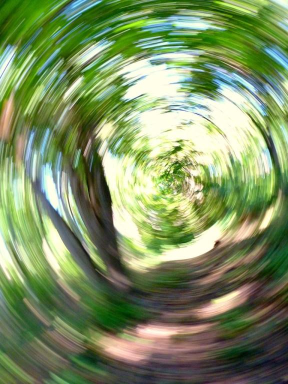 a blurry woodland path illustrates how the world looks during a vertigo attach
