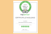 tripadvisor certificate of excellence copy