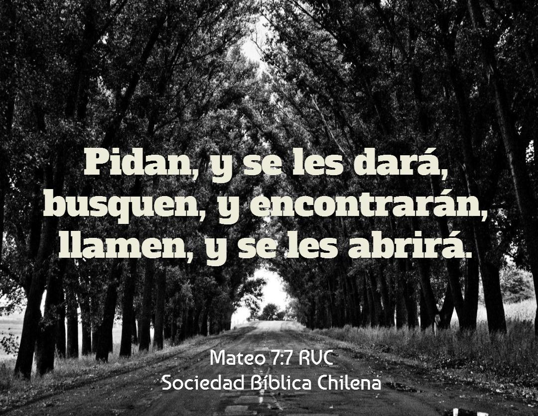 Versiculos De La Biblia De Animo: Versículos De La Biblia Que Dan ánimo Y Aliento