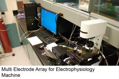 electrophys