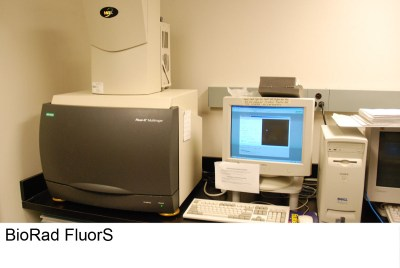 fluors_12_4441020191_o