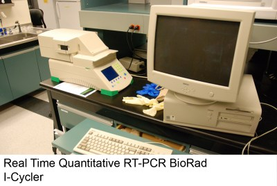 Real Time Quantitative BioRad Cycler