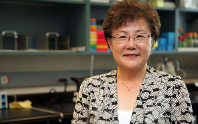 Suh receives FAFS Excellence in Teaching Award