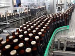 nhà máy bia (Thanh Niên)