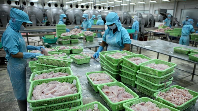 Ả Rập Saudi đình chỉ nhập cảng hải sản Việt Nam do dịch bệnh