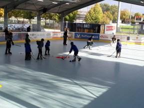 skaterhockey-nachwuchs-4.jpg