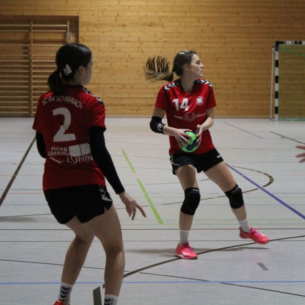 handball-f1_2019_pleichach_13