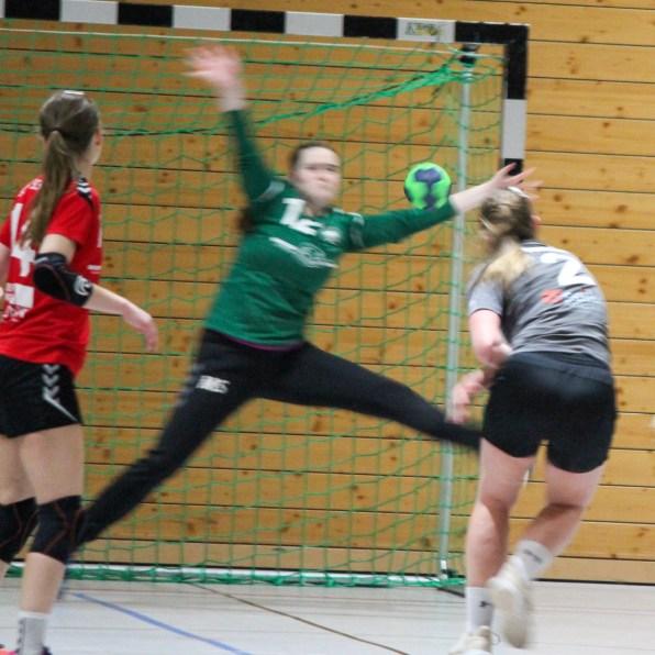 handball-f1-160220_99