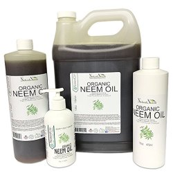 how to make neem oil lotion for scabies treatment