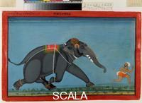 ******** M. 1006 album of portraits of royal elephants: the elephant Dal Badal chasing his attendant, c. 1750