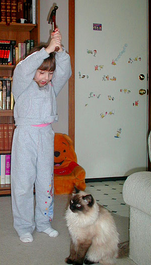 Completing the Trifecta of Adorable Cat Abuse Photos – Whatever