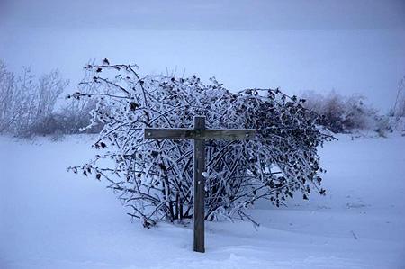 wintercross0621.jpg
